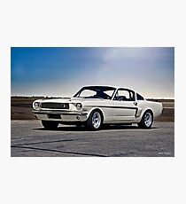 1966 Shelby Mustang GT 'Sheeps Clothing' I Photographic Print