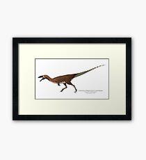 Coelophysis (Megapnosaurus) kayentakatae Framed Print