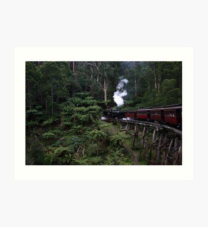 Steam train rattles through the fern gullies Art Print