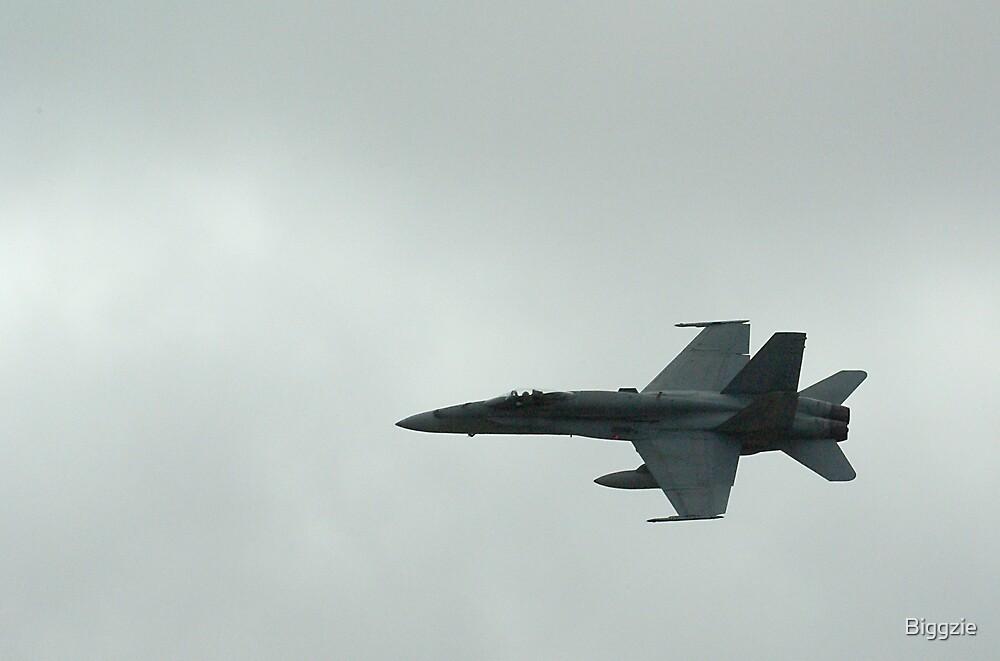 F18 Air Display by Biggzie