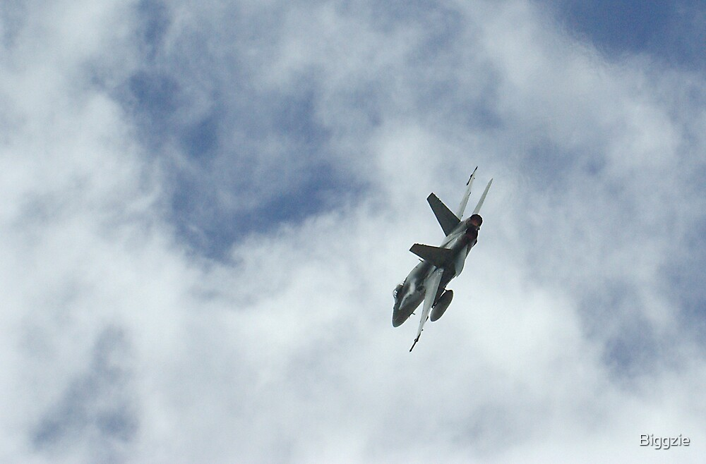 F18 Air Display by Biggzie