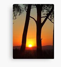 Stockinbingal Sunset Canvas Print