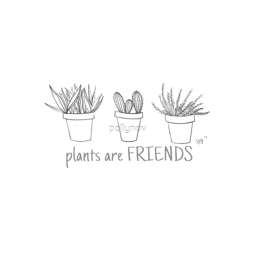 Plants are friends by pollynov