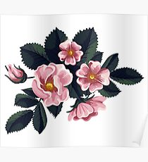 Bouquet of rose - Vintage Poster