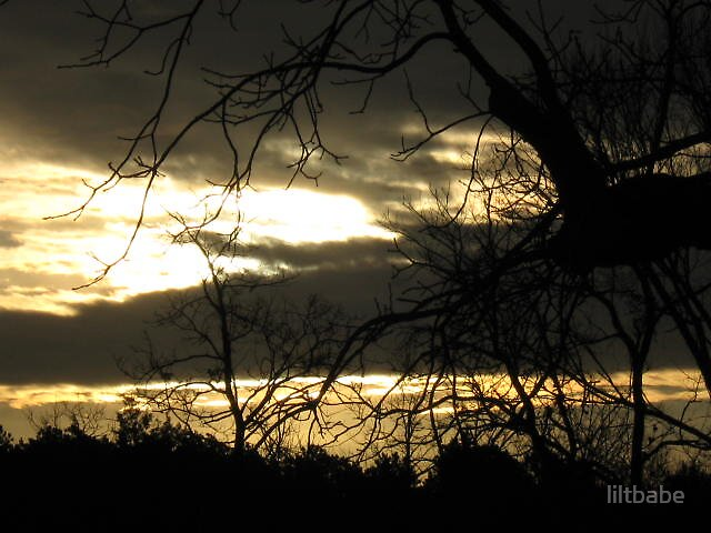 Break of Dawn by liltbabe