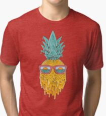 Pineapple Summer Tri-blend T-Shirt