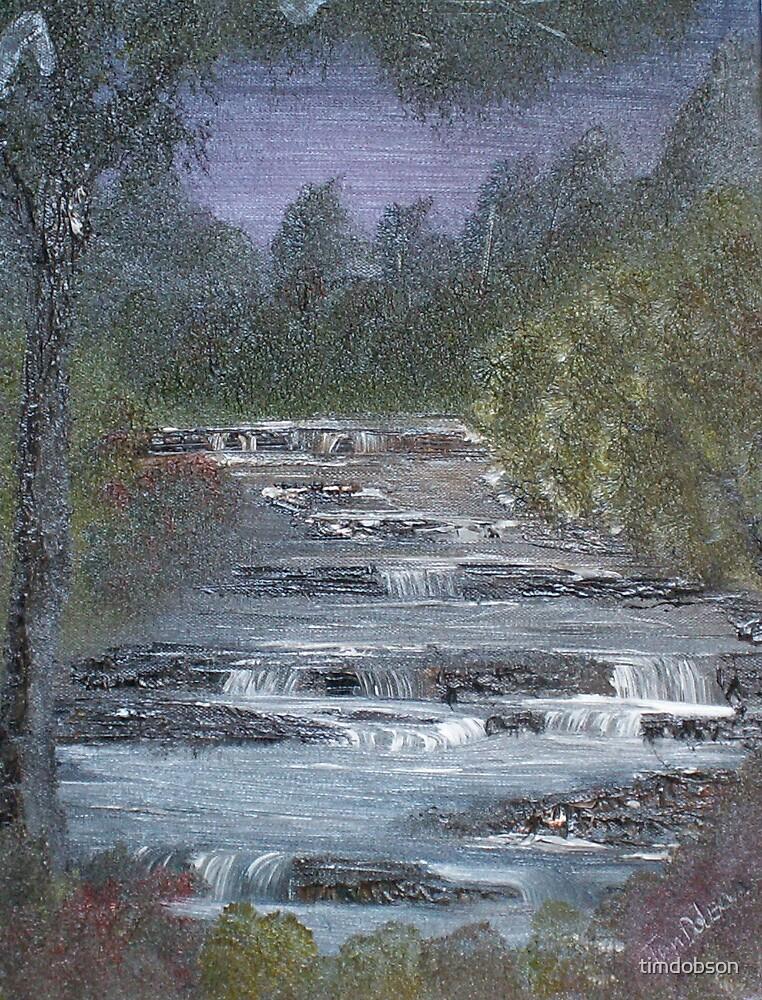 aysgarth falls by timdobson