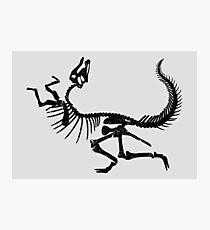 Hadrosaurus Photographic Print