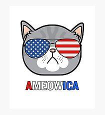 Ameowica Cat Sunglasses Funny Pun Patriot Photographic Print