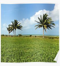 Belize in the Breeze Poster