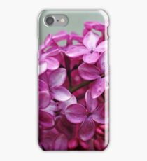 Heavenly Lilacs iPhone Case/Skin