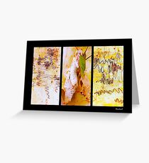 Scribbly Gum Tree Bark Patterns Greeting Card