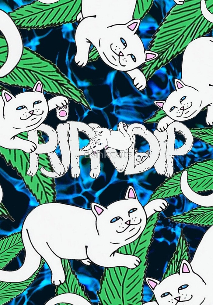 RIPNDIP Chill Cat by dankcats