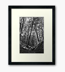 Tweening Framed Print
