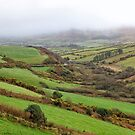The rolling green hills of Ireland by Sharon Kavanagh