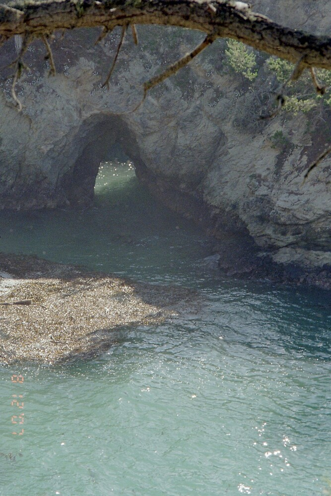 Point Lobos arch by TeriJane