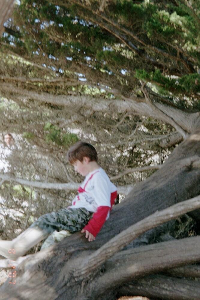 Elf boy in a tree by TeriJane