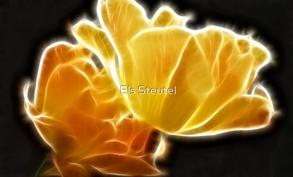 Glow 2 by Els Steutel