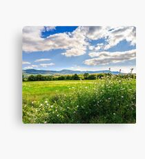 countryside summer landscape with field, forest and mountain ridge Canvas Print