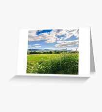 countryside summer landscape with field, forest and mountain ridge Greeting Card