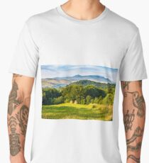 stacks of hay on the hill side Men's Premium T-Shirt