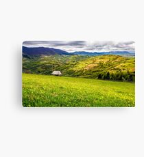 agricultural field in mountains Canvas Print