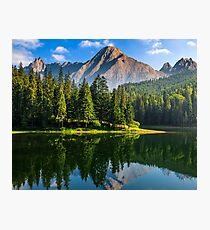 spruce trees near the lake in mountains Photographic Print