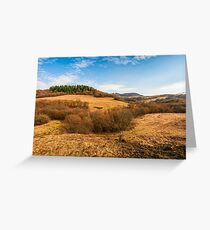 forest on a mountain hill side Greeting Card