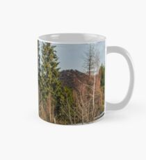 spring has sprung in mountain forest Mug