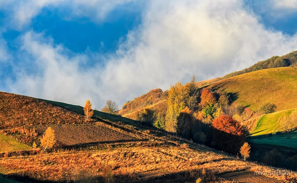 mountain rural area in foggy autumn morning by mike-pellinni