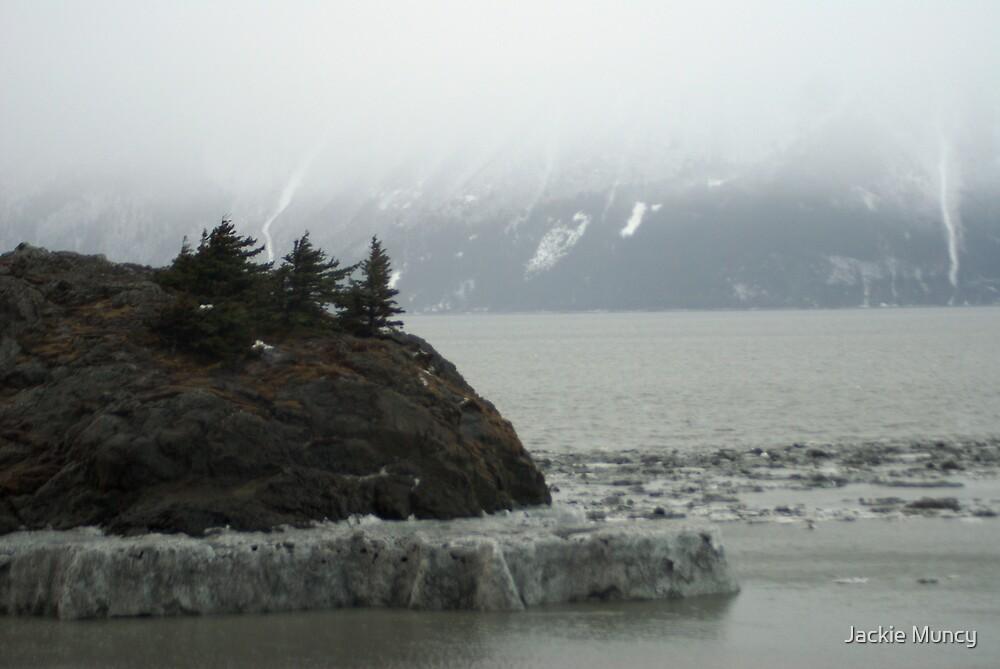 Iced High Tide Mark by Jackie Muncy