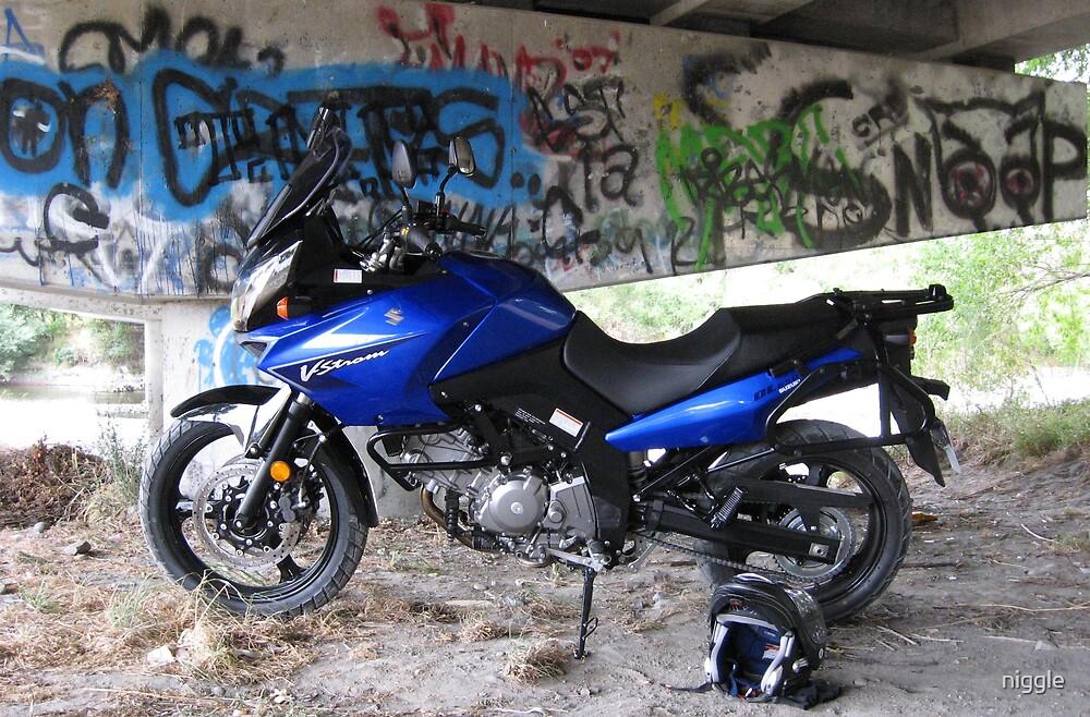 2008 Suzuki DL 650 V-Strom by niggle