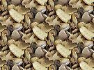 Fossilshellorama Pattern by Yampimon