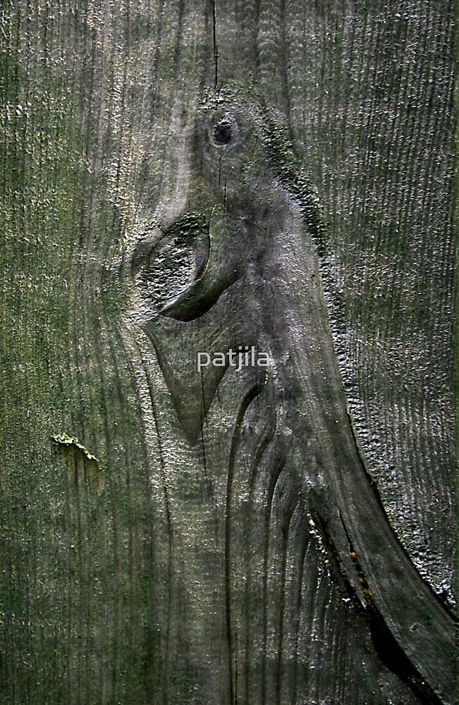 Jurrasic planking by patjila