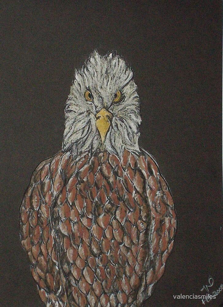 Eagle stare by valenciasmiles