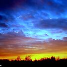 Blue And Yellow Sunrise by 1greenthumb