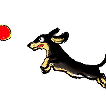 Dachsund persiguiendo una pelota de KaylaPhan
