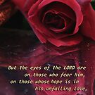 unfailing love by picketty