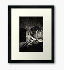 Strange Visitor  Framed Print