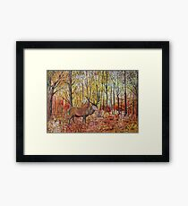 Highland red deer / stag in autumn forest Framed Print