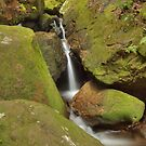 Little Waterfall In A Mossy Valley by Michael Matthews