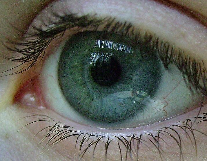 Green Eye by jaci