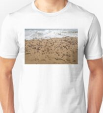 Seashells and Footsteps - Lets Go to the Beach Unisex T-Shirt