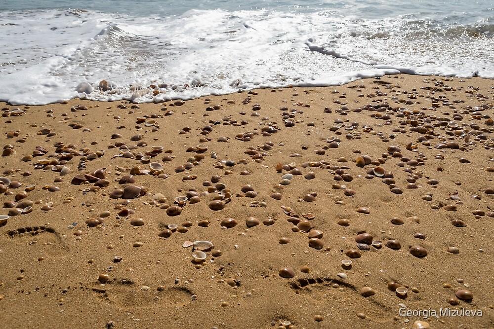 Seashells and Footsteps - Lets Go to the Beach by Georgia Mizuleva