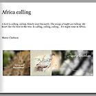Africa calling - The Book by Maree Clarkson