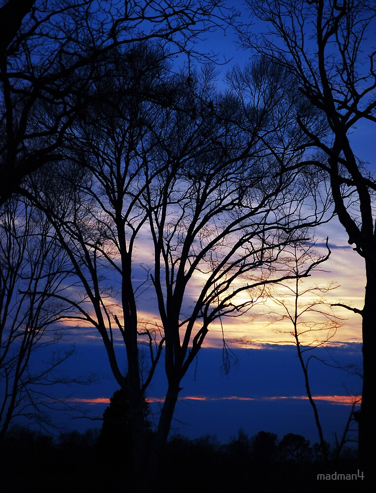 2/29/2008 Another Beautiful Sky by madman4