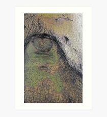 The Ever-Watchful Eye Art Print