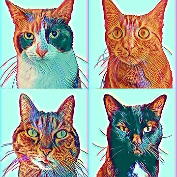 Four Cats by ColorCats