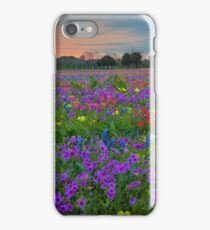 Colorful Wildflowers of Texas 1 iPhone Case/Skin