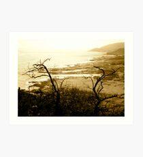 Skeleton Coast Art Print